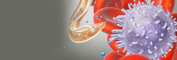 外泌体在肿瘤发展和转移中的作用(综述)