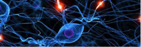 药物递送丨研究人员利用外泌体装载siRNA治疗亨丁顿舞蹈症