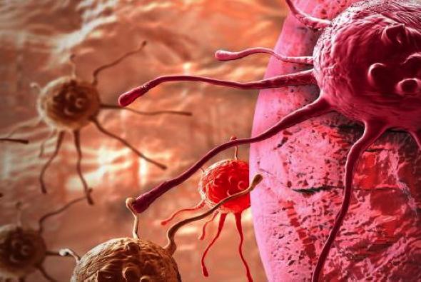 阻断外泌体的释放或可加强胰腺癌化疗效果