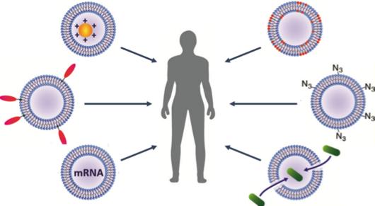 伦敦帝国理工学院:将细胞外膜泡重新改造为智能纳米级治疗药物