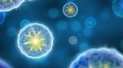 研究人员发现干细胞外泌体促进脑细胞再生