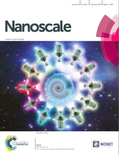 Nanoscale:基于硫醇基团的荧光标记细胞外囊泡方法 实现囊泡摄取和运输的定量分析