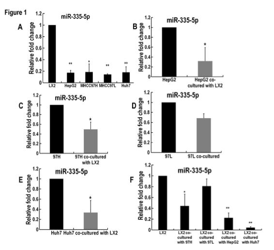 外泌体miR-335可作为肝癌治疗的新策略
