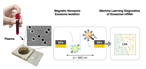 美科学家将纳米流控技术与机器学习相结合利用外泌体精确诊断胰腺癌