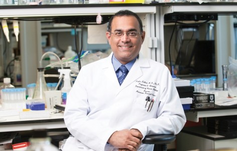 如何大规模生产符合GMP要求的临床级外泌体用于癌症治疗?