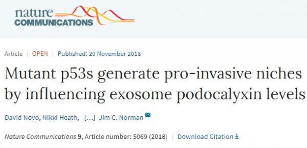 Nature communication:突变型P53影响外泌体足糖萼蛋白水平促进肿瘤侵袭