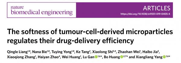 华中科技大学:肿瘤细胞微粒的柔软性调节其药物递送效率 | Nature Biomedical Engineering