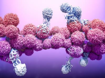 郑州大学第一附属医院综述:外泌体circRNA在人类疾病发生中的作用和应用