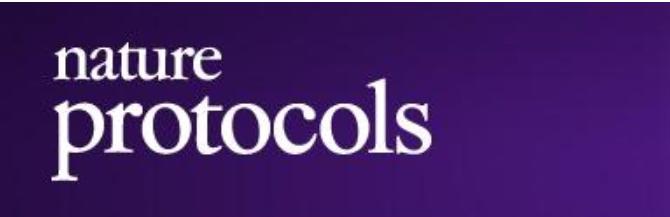 Nature protocol:胞外囊泡功能研究中的新示踪系统