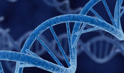 外泌体测序——肿瘤液体活检新宠儿