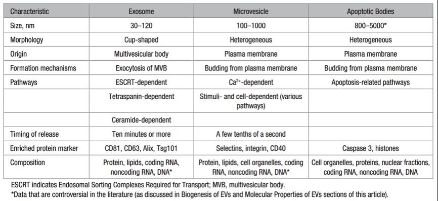 【综述】细胞外膜泡与血管新生