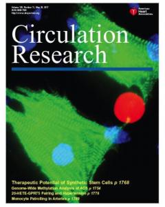 Circulation Research封面文章   人造MSC颗粒成功保护急性心肌梗死的小鼠心脏,开发出替代细胞治疗的新方法