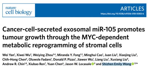 【NCB】华人科学家揭示肿瘤细胞外泌体miR-105通过MYC依赖性途径重编程基质细胞的代谢从而促进肿瘤的生长