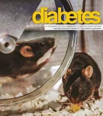 Diabetes:糖尿病改变了循环细胞外囊泡的浓度、内容物和功能
