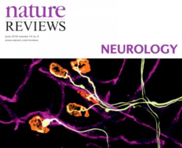Nature Reviews Neurology:外泌体可以传播毒性淀粉样蛋白导致阿尔茨海默病