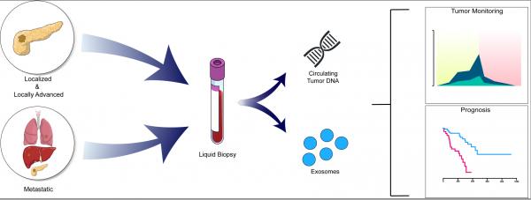外泌体DNA对胰腺癌预后的优势| MD安德森最新发现【Gastroenterology】