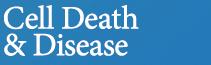 哈尔滨医科大学:外泌体15-LO2在体内和体外介导缺氧诱导的肺动脉高压