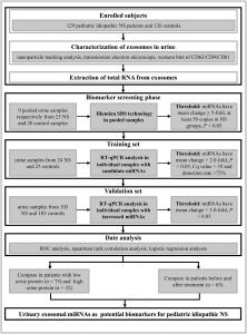 南方医科大学、南京大学:特发性肾病综合征患儿的尿液外泌体microRNA特征分析