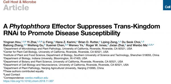 疫霉菌效应器抑制跨界RNAi以促进宿主疾病易感性 | Cell Host Microbe