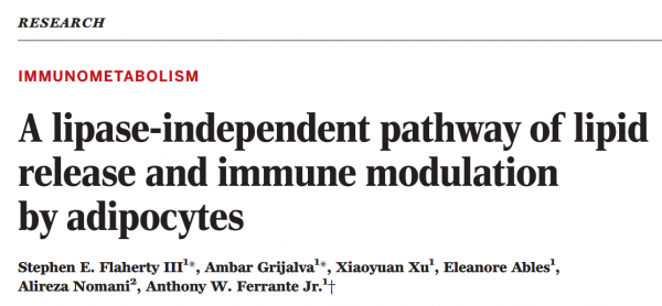 Science:脂肪细胞外泌体对巨噬细胞发挥调节功能