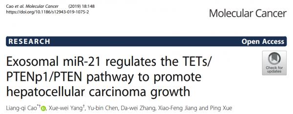 Mol Cancer:外泌体miR-21调节TETs/PTENp1/PTEN途径促进肝细胞癌的生长