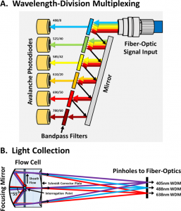 一种新型增强光散射灵敏度的流式细胞仪用于生物纳米颗粒的分析
