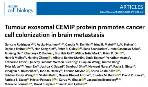 NCB:肿瘤外泌体CEMIP蛋白促进脑转移中的癌细胞定植