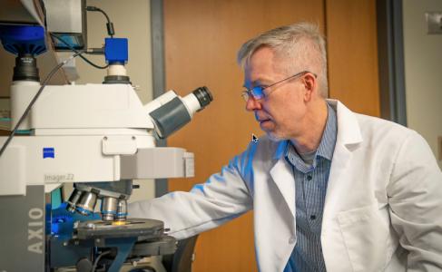 走近外泌体——肿瘤细胞和免疫细胞如何通过外泌体进行通信