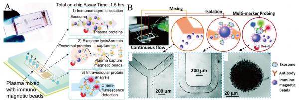 上海交通大学综述:基于微流体的外泌体分离和检测技术在疾病诊断中的进展
