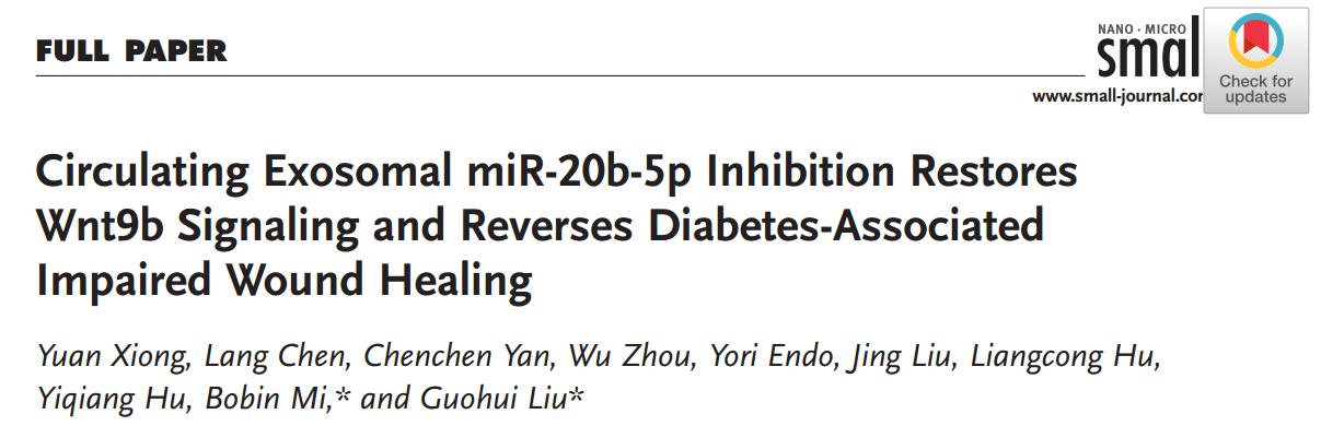 Small:抑制糖尿病患者外泌体miR-20b-5p可促进伤口愈合