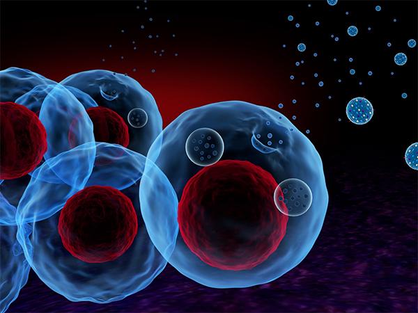 来自大自然的馈赠:基于外泌体的一种新的基因治疗策略