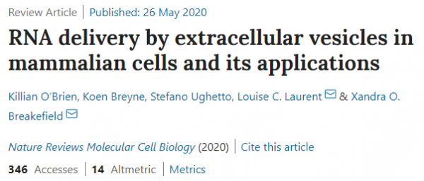 43分Nature子刊综述:细胞外囊泡在哺乳动物细胞中的RNA递送及其应用