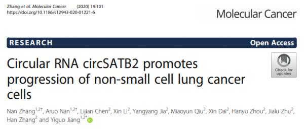 广州医科大学:环状RNA circSATB2经外泌体促进非小细胞肺癌的发展