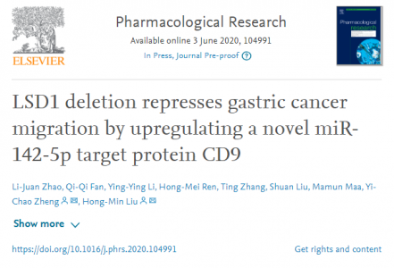 LSD1缺失通过上调miR-142-5p靶蛋白-CD9抑制胃癌转移