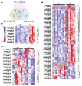 JEV:阿尔茨海默氏病脑中EV的小RNA图谱及其与外周血EV的比较