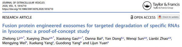 JEV:融合蛋白工程化的外泌体靶向降解特定RNA
