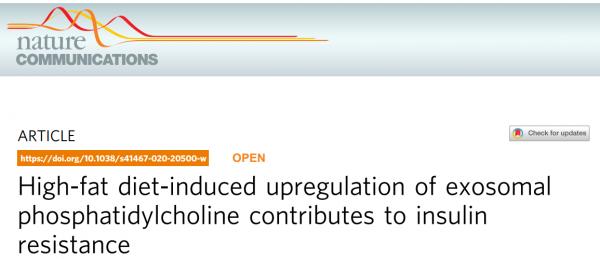 Nature子刊:外泌体脂质谱分析,揭示高脂饮食诱导胰岛素抵抗机制