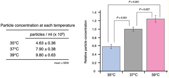 JEV:温度变化对细胞外囊泡释放的调节作用