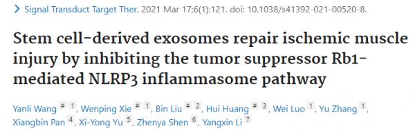 即时IF=17.32苏州大学李杨欣教授团队:脐带间充质干细胞外泌体环状RNA cPWWP2A修复缺血组织损伤