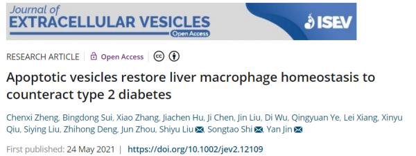 空军军医大学金岩教授团队发现干细胞凋亡囊泡靶向调控肝巨噬细胞治疗2型糖尿病新机制