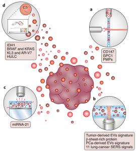 Nature Protocols:使用单囊泡技术揭示细胞外囊泡的异质性