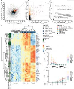 炎症小体诱导的EV具有不同的RNA特征并改变巨噬细胞反应