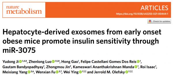 Nature Metabolism:外泌体miRNAs在早期和慢性肥胖中的不同作用