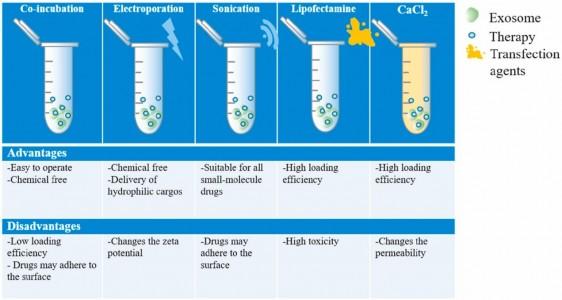 【综述】国家纳米科学中心:牛奶外泌体作为口服给药系统的前景探讨
