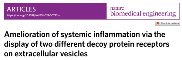 Nature子刊:细胞外囊泡上展示两种不同诱饵蛋白受体可改善全身炎症